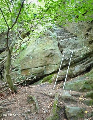 Über Leitern und Treppen geht es zur Aussicht auf dem Ritterfelsen
