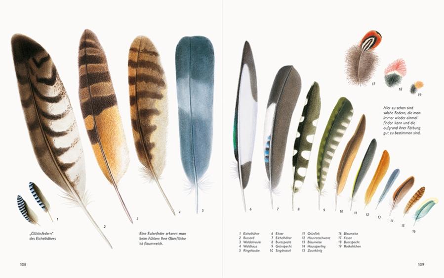 Naturbuch_Federn_108-109